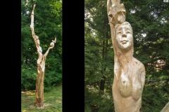 TreeCarving_05
